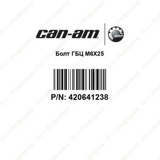 Болт M6x25 BRP 420641238